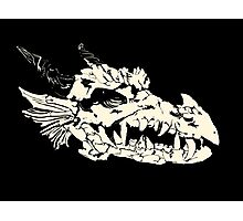 Ancient Dragon Skull Photographic Print
