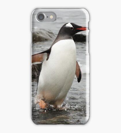 """Gentoo Penguin ~ """"Gawd it's Cold"""" iPhone Case/Skin"""