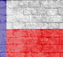 Texas flag grunge brick wall Sticker