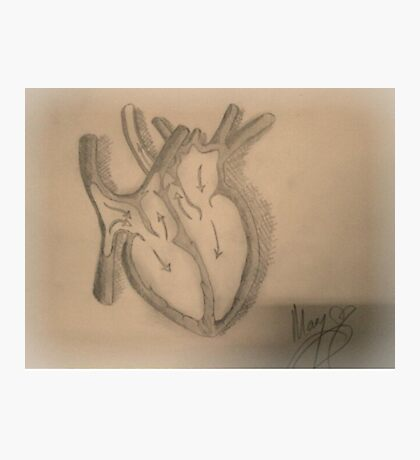 Love Organ Photographic Print