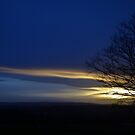 First Day Sunset by Bill Lighterness