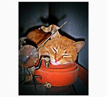 Quixote,Orange Cat,Orange Belt Unisex T-Shirt