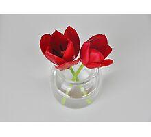 Red tulip still life Photographic Print