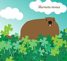 Groundhog in the Clover, Call him by his Latin name by tinyflyinggoats