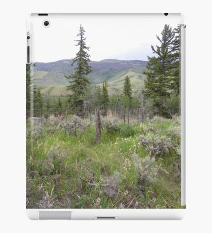 Colorado Burial Site  iPad Case/Skin