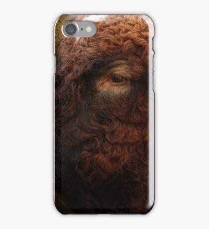 faithful friend named ferdinand iPhone Case/Skin