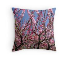 Pink Blossom in China Throw Pillow