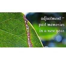 torn leaf Photographic Print