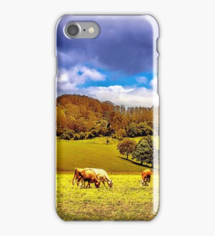 Cloudy Day in the Orara Valley iPhone Case/Skin