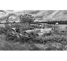Prairie Weeds - Black and White Photographic Print