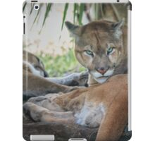 Facing Extinction - Florida Panther iPad Case/Skin
