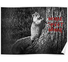 Home Sweet Home Squirrel Poster
