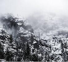 Frozen in Time by Lee Harvey