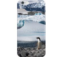 "Adelie Penguin  ~  ""and this is my backyard"" iPhone Case/Skin"