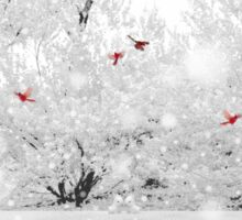 Winter, Winter Sticker