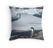 "Adelie Penguin  ~  ""and this is my backyard"" Throw Pillow"
