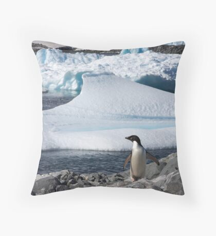 """Adelie Penguin  ~  """"and this is my backyard"""" Throw Pillow"""