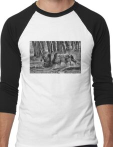 BULL FIGHT  IN THE OUTBACK Men's Baseball ¾ T-Shirt