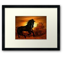 Spirit of the Sun Framed Print