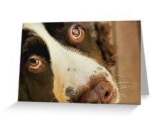Want Me to Take You For a Walk? Greeting Card