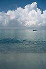 Tropical beach (Curaçao) by Morag Anderson