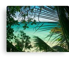 Through The Palms Canvas Print