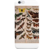 Natural history of the animal kingdom for the use of young people..- -William Forsell Kirby iPhone Case/Skin