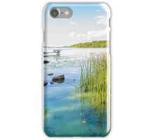 Reeds and Dnieper River iPhone Case/Skin