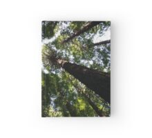 Redwood Forest Hardcover Journal