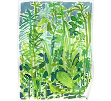 Lush Green Garden Poster