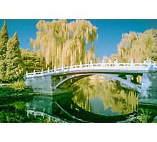 Tranquil Bridge in Infra Red Photographic Print