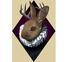 The Fancy Jackalope Photographic Print