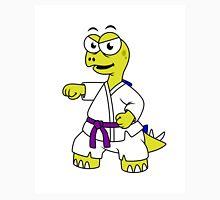 Illustration of a Stegosaurus practicing karate. Unisex T-Shirt