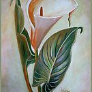 Happy Anniversary Calla Lily by taiche