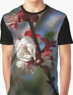 Sunlight Embracing Apricot Blossom Graphic T-Shirt