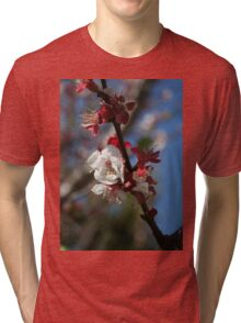 Sunlight Embracing Apricot Blossom Tri-blend T-Shirt
