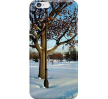 A winter snow scene iPhone Case/Skin