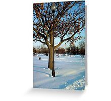 A winter snow scene Greeting Card