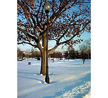 A winter snow scene Photographic Print