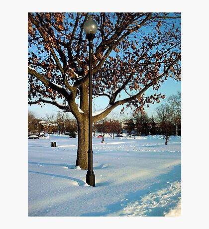 A winter snow scene Photographic Print