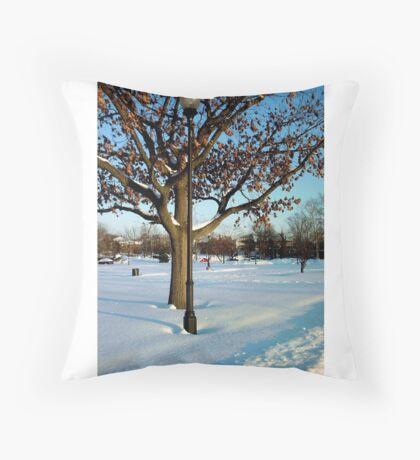 A winter snow scene Throw Pillow
