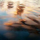 Sunset at Green Point..........Tasmania by Imi Koetz