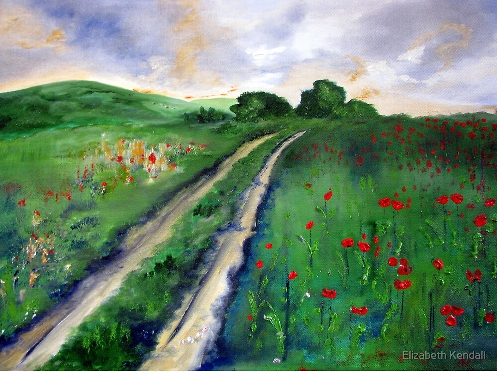 A road to somewhere by Elizabeth Kendall