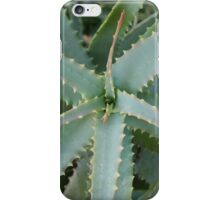 Aloe Vera iPhone Case/Skin