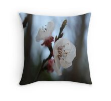 Close Up Apricot Blossom In Pastel Shades Throw Pillow