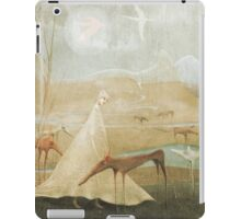 Finding Solace iPad Case/Skin