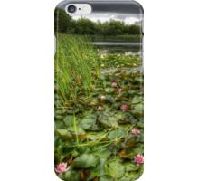 Summer Lilies iPhone Case/Skin