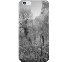 Frosty Morn iPhone Case/Skin