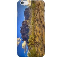 Treasure Loop at Lost Dutchman State Park iPhone Case/Skin