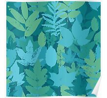 Turquoise leaves  Poster